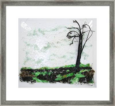 Across The Field Framed Print by Mariann Taubensee