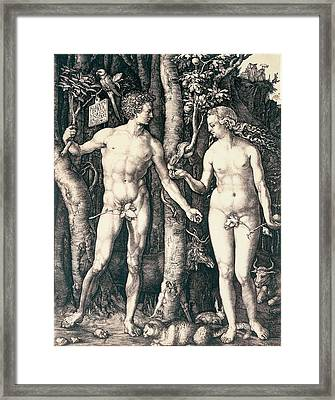 Adam And Eve Framed Print by Albrecht Durer