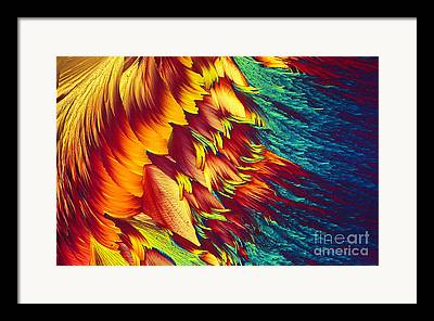 Energy Currency Framed Prints