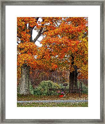 Adirondack Autumn Beauty Framed Print