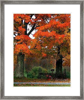 Adirondack Palette Framed Print