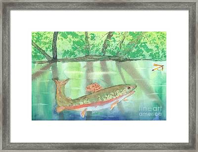 Adirondack Reflections Framed Print by David Crowell