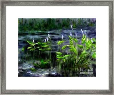 Adirondacks Natural Wetlands Pickeral Plant Framed Print by Judy Filarecki