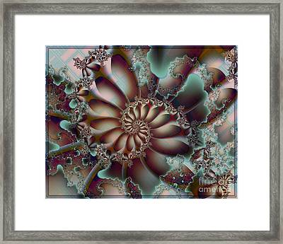 Adventures Framed Print by Michelle H