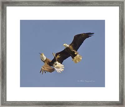 Aerial Ballet Framed Print
