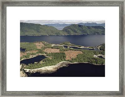 Aerial View Of Clearcut Temperate Framed Print