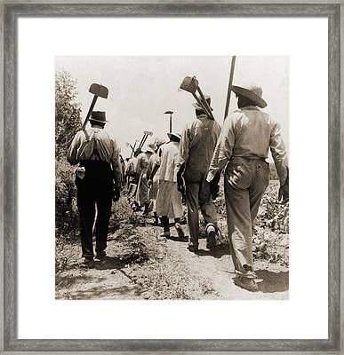 African American Cotton Hoers Worked Framed Print by Everett