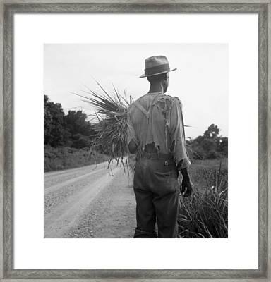 African American Man In Living In Rural Framed Print by Everett