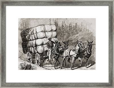 African American Teamster Transporting Framed Print by Everett