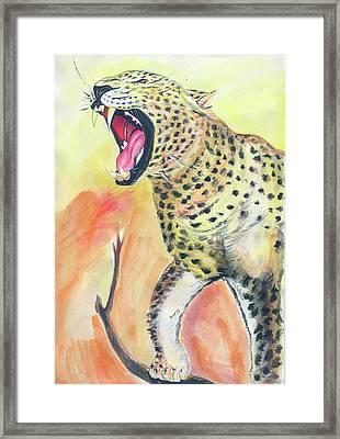 African Leopard Framed Print