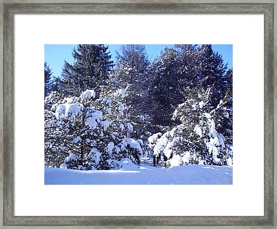 After A New England Snowstorm Framed Print by Lucien Beauley