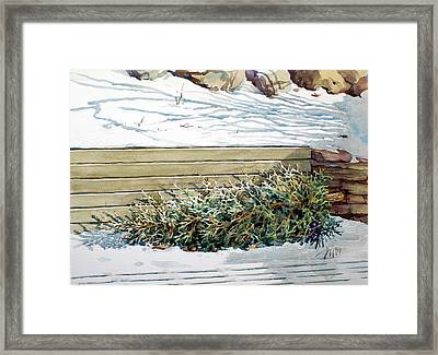 After Christmas Framed Print by Peter Sit