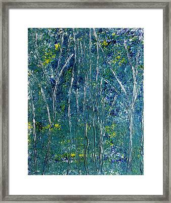 After Monet Framed Print by Dolores  Deal
