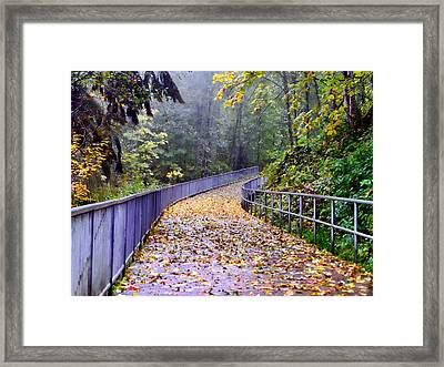 After Rain Framed Print