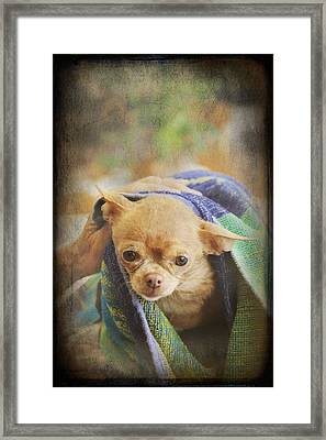 After The Bath Framed Print by Laurie Search