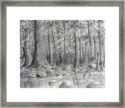 Framed Print featuring the drawing After The Flash Flood by Jim Hubbard