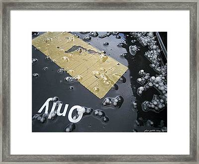 After The Hail Framed Print by John Potts