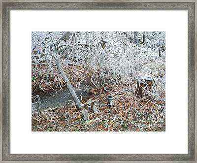 After The Ice Storm In Maine Framed Print by Jeannie Atwater Jordan Allen