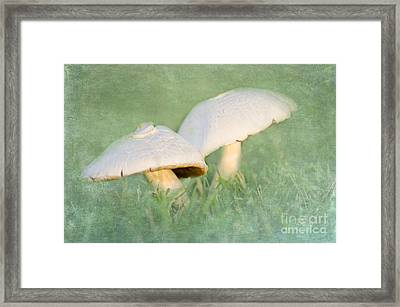 After The Rain Framed Print by Betty LaRue