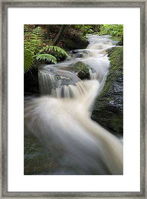 After The Rain Framed Print by Juergen Mayer