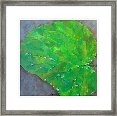 After The Rain Framed Print by Thomas Dreesen