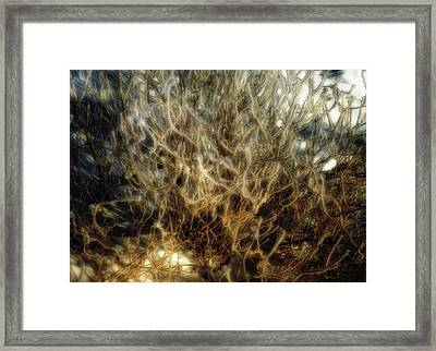 After The Snow Framed Print by Ellen Heaverlo