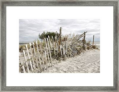 After The Storm Framed Print by Denise Pohl