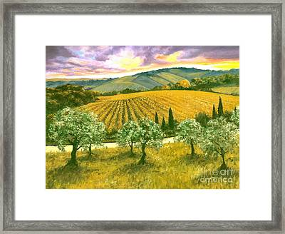 After The Storm Orig. For Sale Framed Print by Michael Swanson