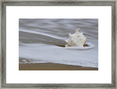 Framed Print featuring the photograph After The Wave by Tamera James