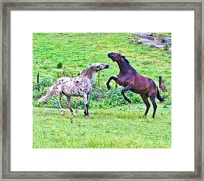 After Working Framed Print by Betsy Knapp