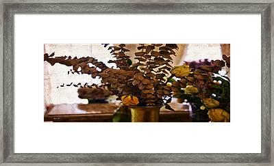 Afterglow Framed Print by Madeline Ellis