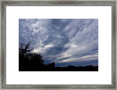 Afternoon Blues Framed Print by Nicholas Evans