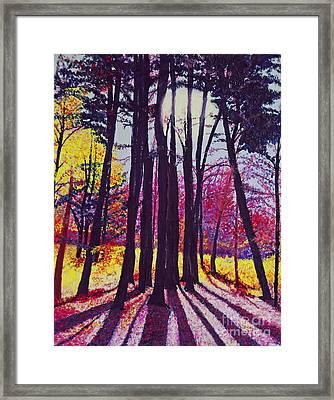 Afternoon Forest Framed Print