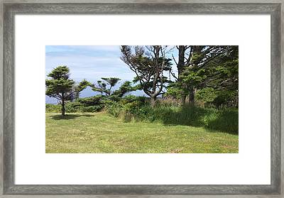 Afternoon Magic Framed Print