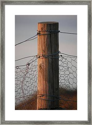 Afternoon Post Framed Print by Dickon Thompson