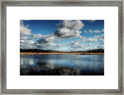 Afternoon Reflections At The Marsh Framed Print by Heather  Rivet