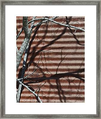Framed Print featuring the photograph Against A Wall by Cheri Randolph