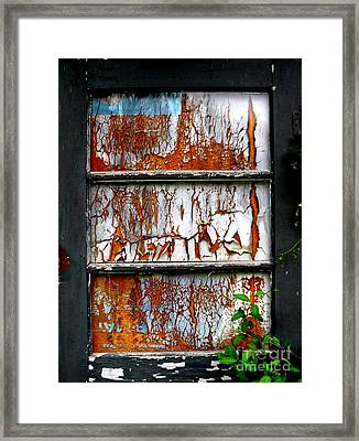 Aged Door Framed Print by Amy Sorrell