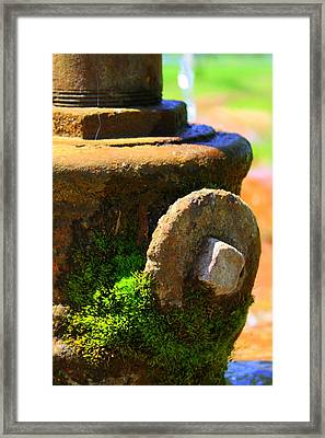 Aged Framed Print by Inspired Arts