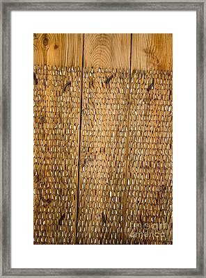 Agricultural Tool Of Spain Framed Print by Perry Van Munster