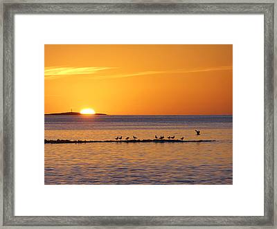 Agua Verde Sunrise Framed Print by Anne Mott