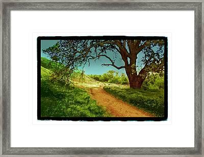 Ahmanson Ranch Calabasas 2 Framed Print by Noah Brooks