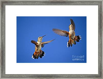 Air Dance Framed Print