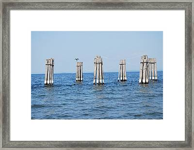 Airing Out My Wings Framed Print by Tiffany Ball-Zerges