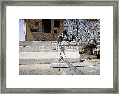 Airman Stands Post To The Entry Control Framed Print by Stocktrek Images