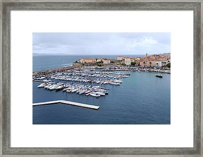 Ajaccio Harbour. Framed Print by Terence Davis