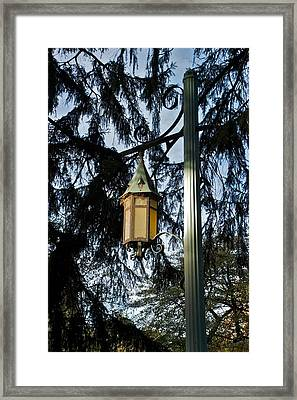 Framed Print featuring the photograph Akers Night by Joseph Yarbrough