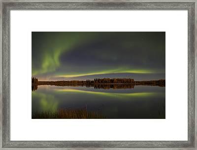 Alaska Delight Framed Print