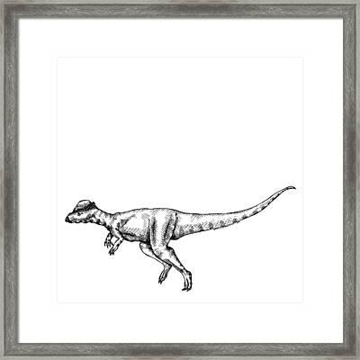 Alaskacephale Dinosaur Framed Print by Karl Addison