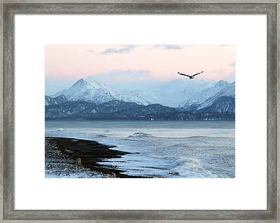 Framed Print featuring the photograph Alaskan Beach At Sunset by Michele Cornelius